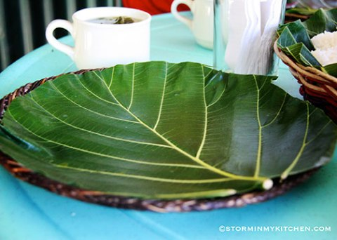 breadfruit-leaves-2