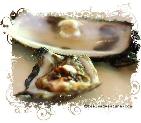 fresh-oysters
