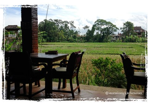 Cafe-Angsa-rice-fields