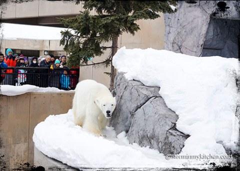 Asahikawa-Zoo